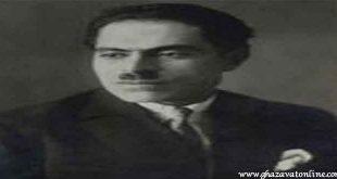 ميرزا جواد خان عامري