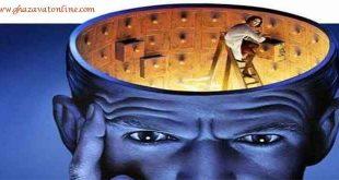 حافظه مغز